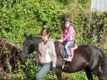 На Закарпатті лікують за допомогою коня!